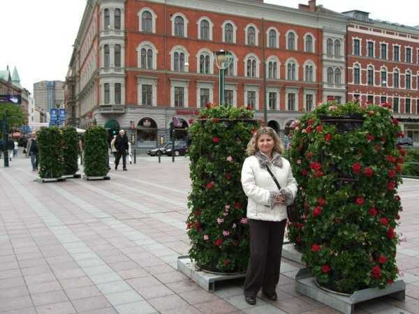 Malmö - Sokaklardaki çiçekler