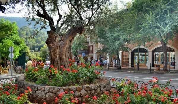 Valldemossa: Rüya adasında bir masal kasabası