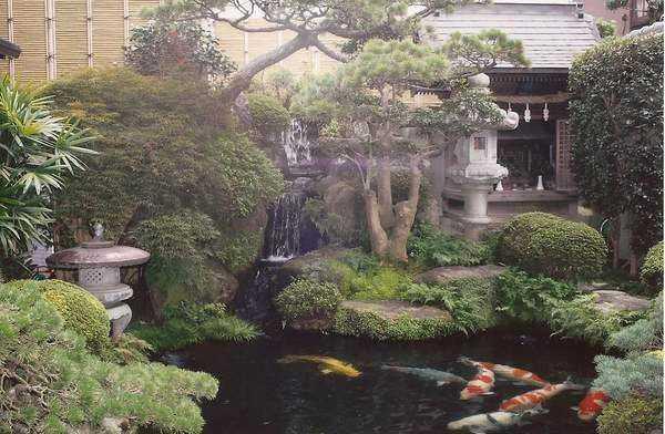 Bir Japon bahçesi