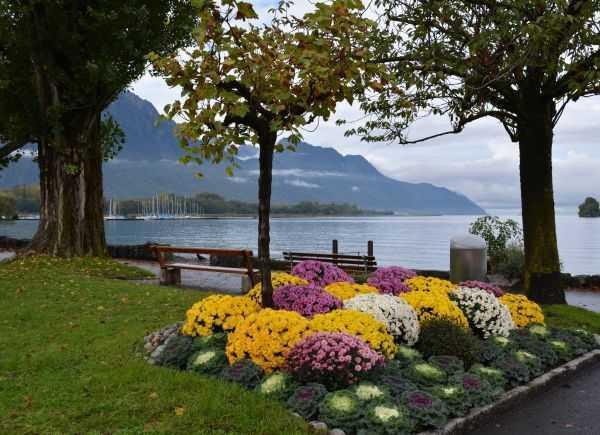 Montrö - İsviçre