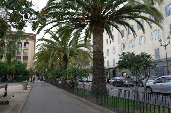Ajaccio - Avenue de Paris