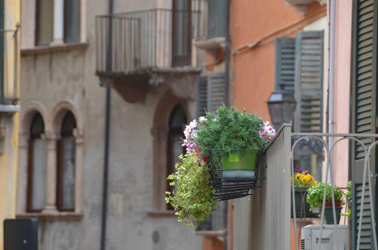Verona sokaklarından detay…