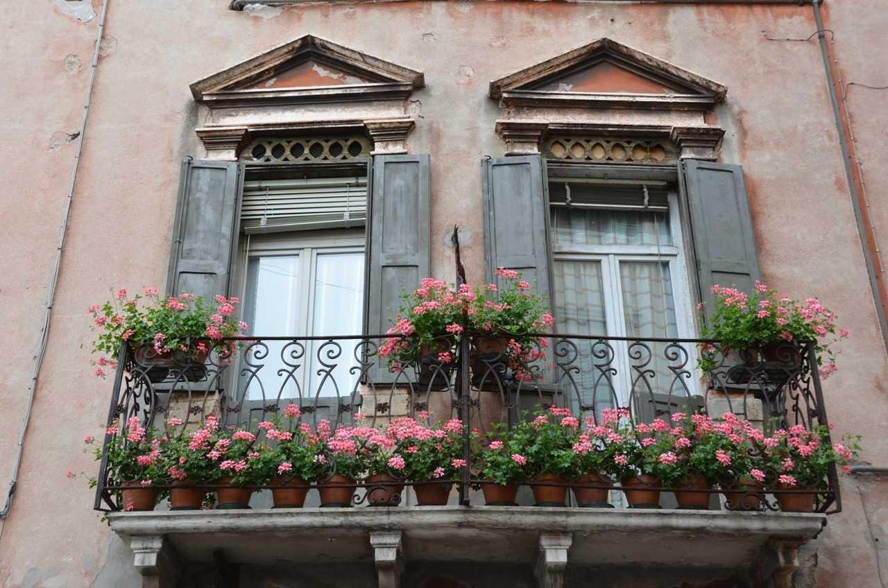 Verona için çiçek çok önemli…