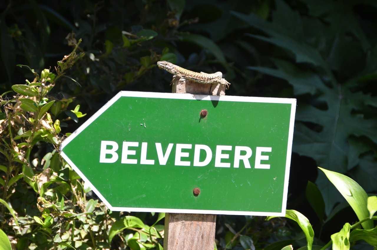 Giardino Guisti - Belvedere – Anlamı güzel manzara…