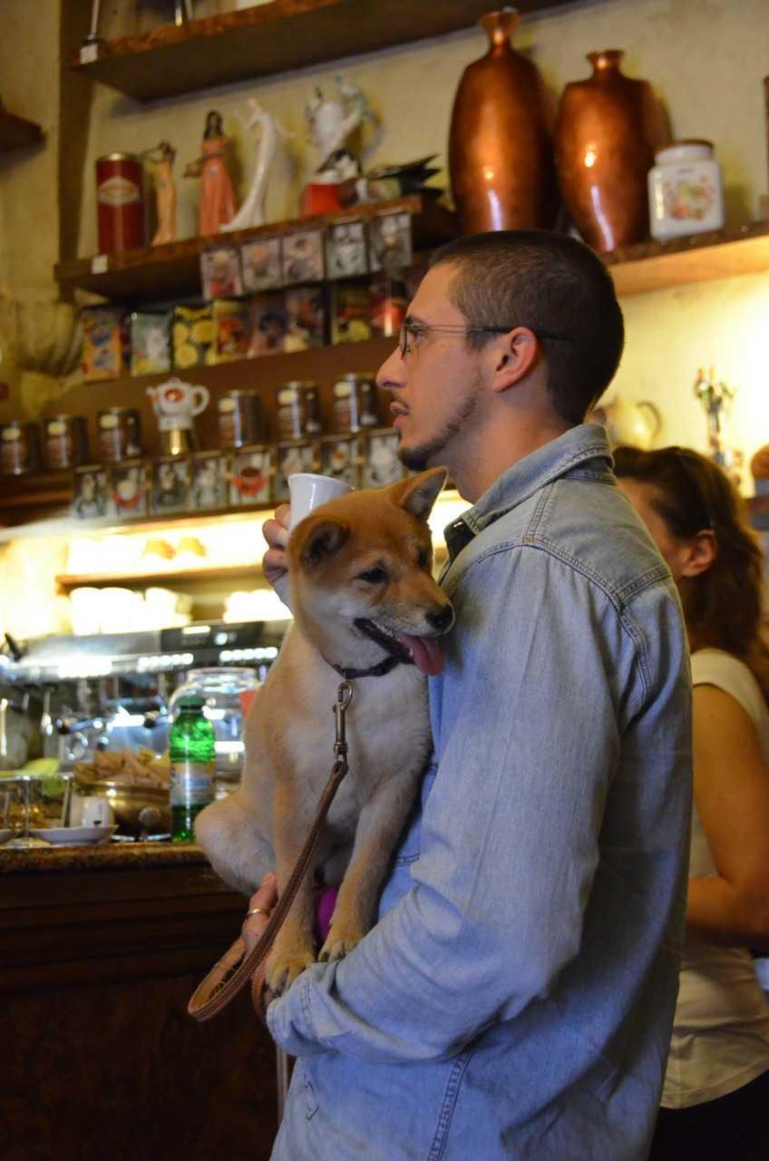 Caffetteria Borsari  Veronalıların ayak üstü kahve içtikleri bir mekân …