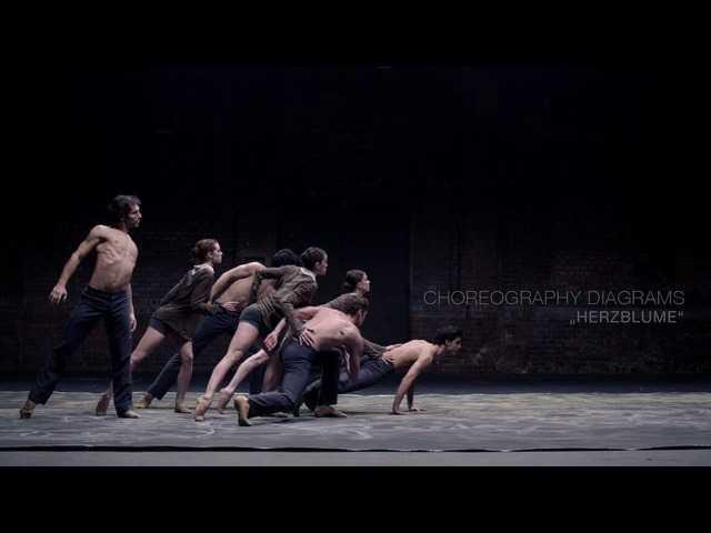 Viyana Devlet Balesi Sanatçıları - casanovasorolla.net