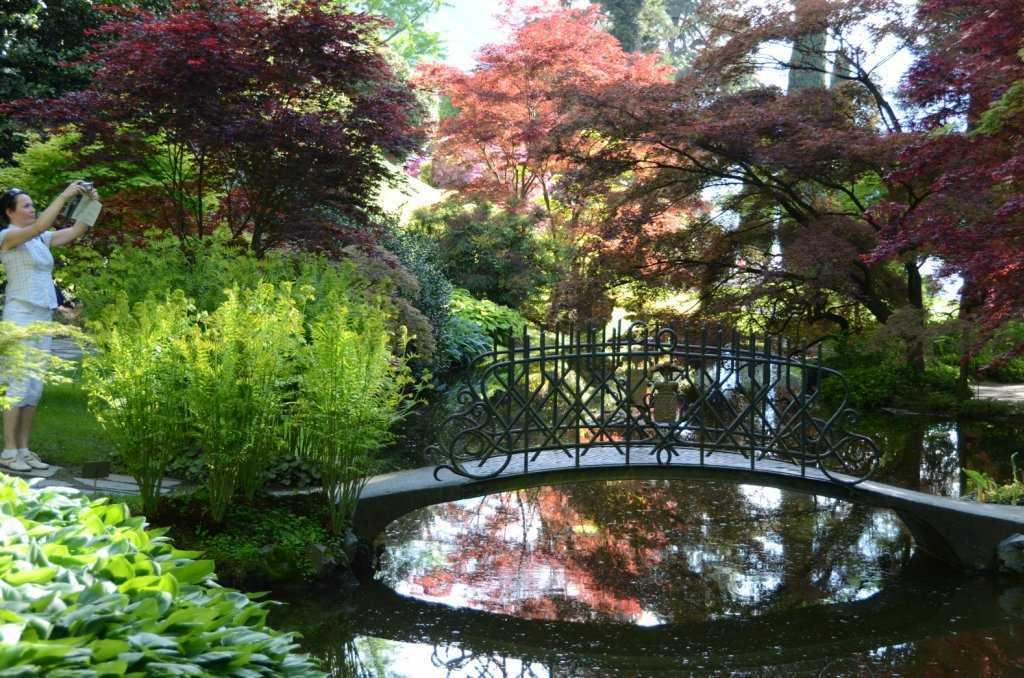 I Giardini di Villa Melzi – Kavisli patikaların sizi ulaştırdığı göletler…