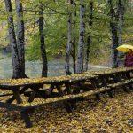 Sonbaharda şiirsel bir gezi...