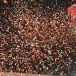 Verona Sevgililer Günü Festivali ve Verona Karnavalı