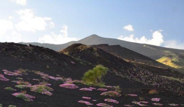 Sicilya Gezisi Yazı Dizisi: Bölüm 2 - Etna Maceramız