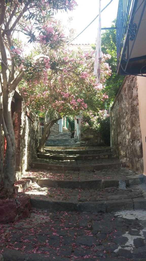 Molivos, Midilli Adası