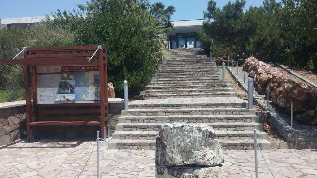 Fosil Ormanı Müzesi, Sigri, Midilli Adası