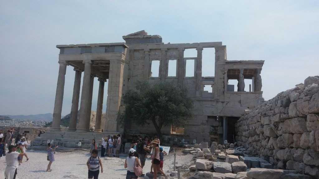 Erectheion Anıtı ve önündeki zeytin ağacı, Atina,Yunanistan