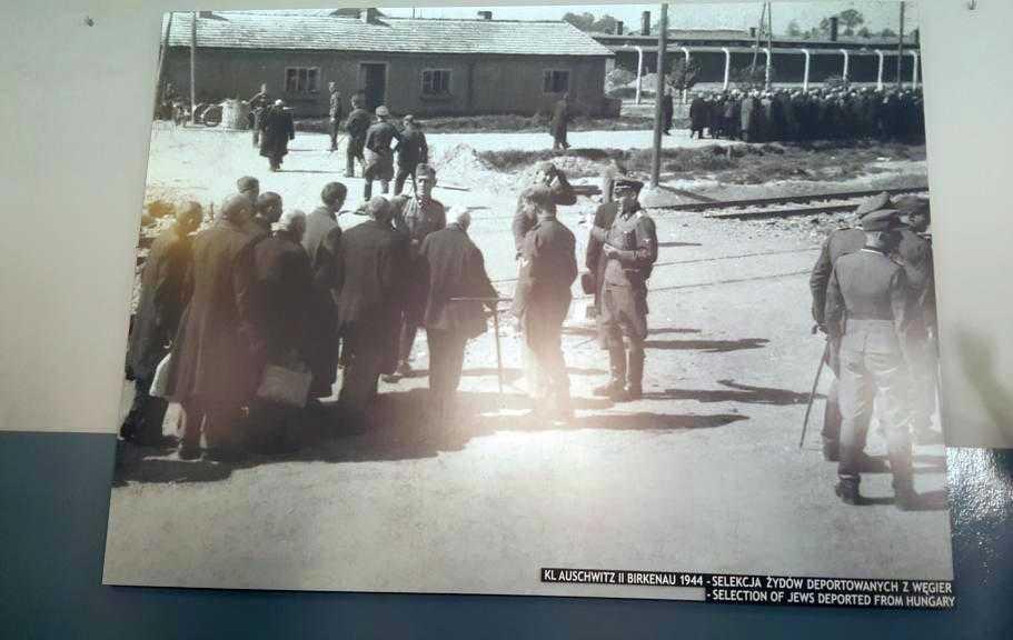 Kamp girişindeki seçim anı: Kimlerin çalışabileceği ve kimlerin direkt gaz odasına gideceğine burada karar veriliyormuş.
