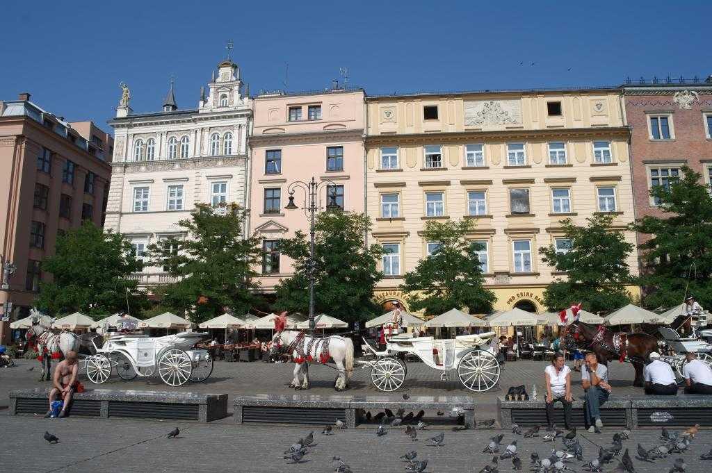 Krakow meydanındaki faytonlar