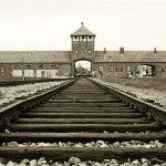 Arabayla İstanbul'dan Polonya'ya - Bölüm 3: Auschwitz