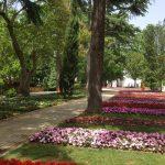 Boğaza nazır bir park: Emirgan Korusu