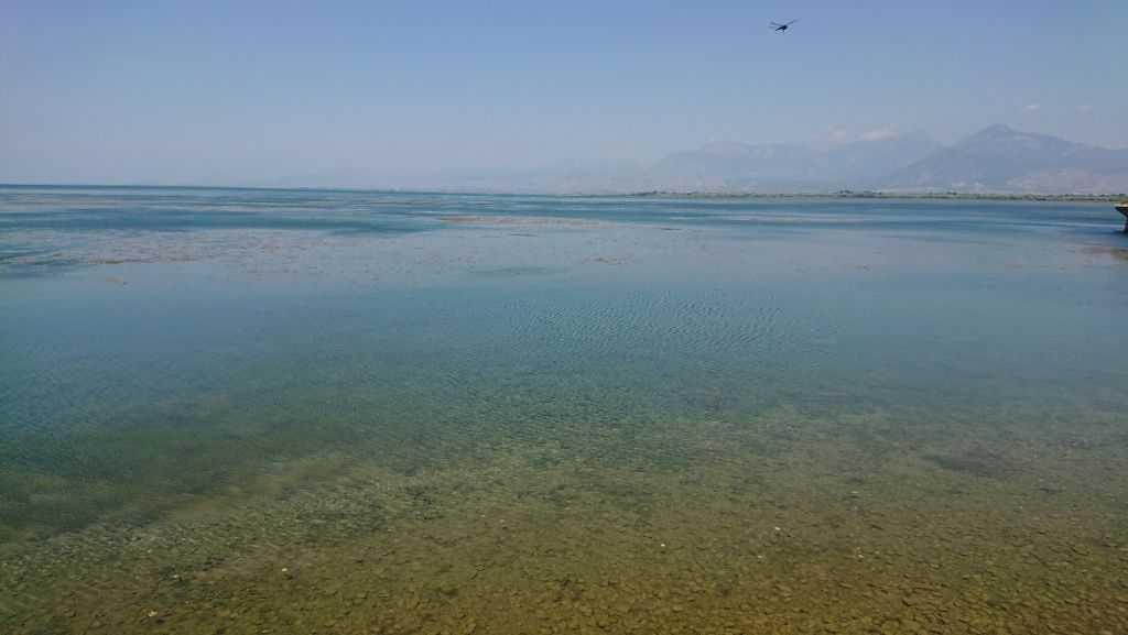 İşkodra Gölü, Arnavutluk