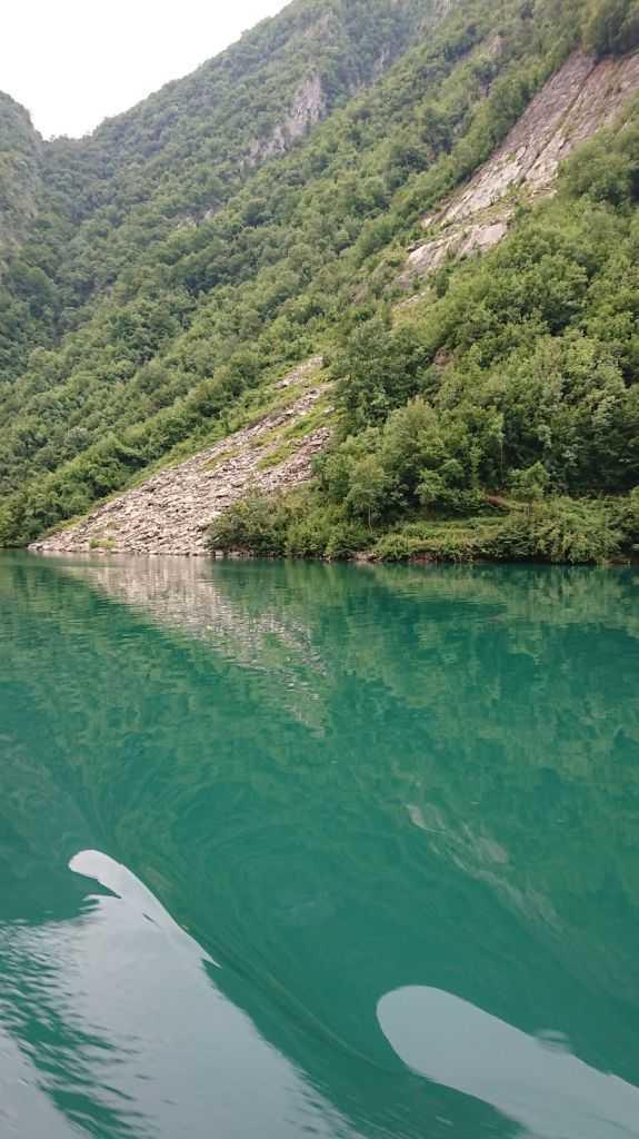 Koman, Arnavutluk